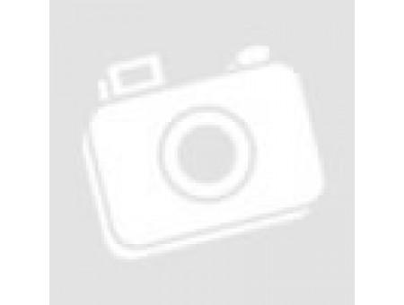 Защита задняя (уголки длинные) 60,3 мм